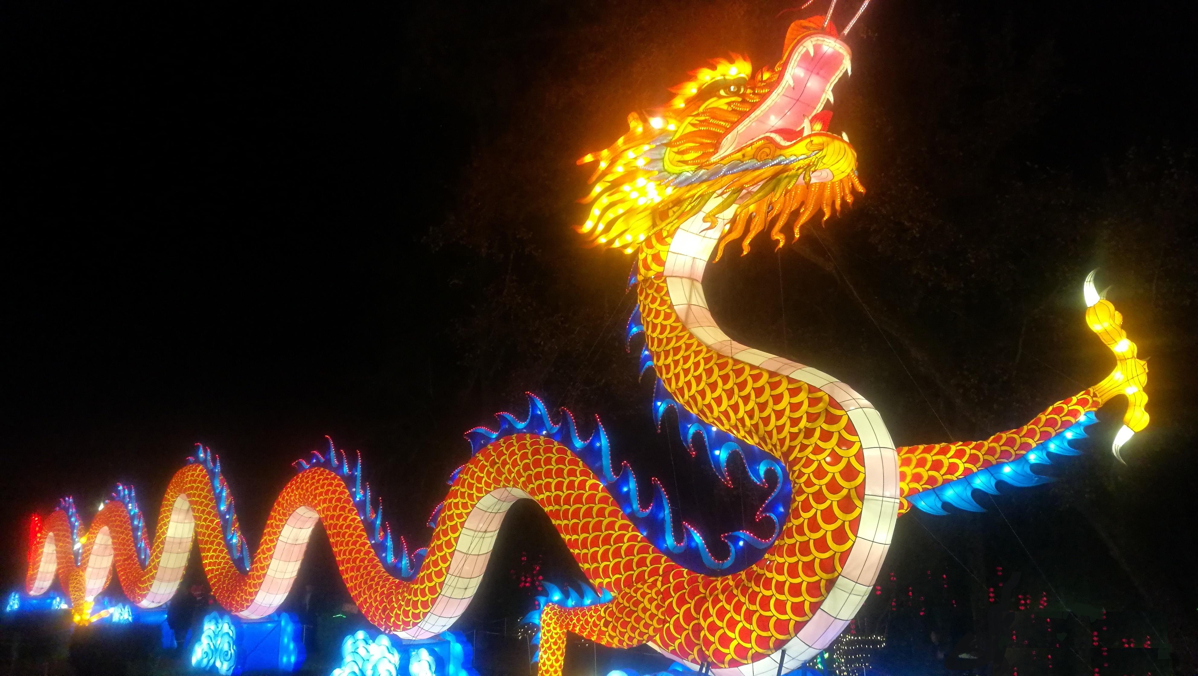 Dragon Festival des Lanternes Gaillac