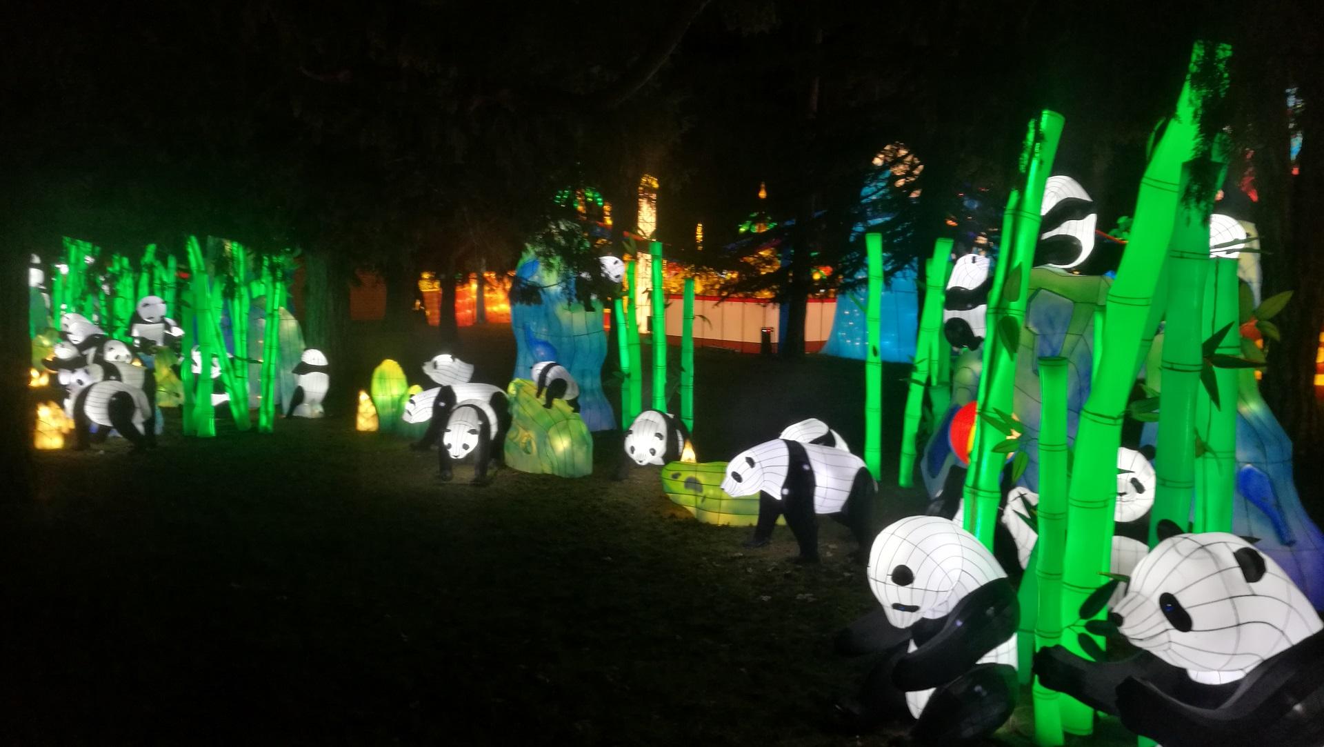 Pandas Festival des Lanternes Gaillac